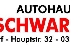 small-Autohaus-Schwarzer