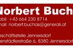small-Buchas-Norbert_Generali
